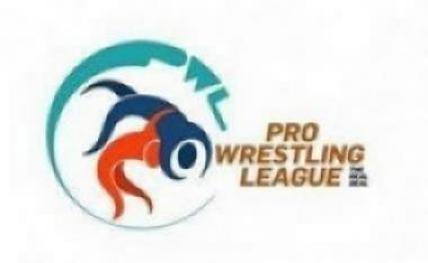PWL: Punjab dash Mumbai's knockout hopes