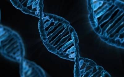 DNA20190209164205_l